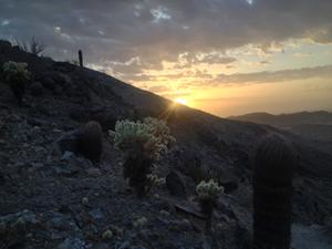 Michelle's Sunrise Hike