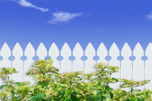 picket fence 1