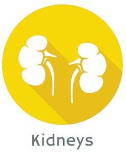 Preventing-kidney-complications