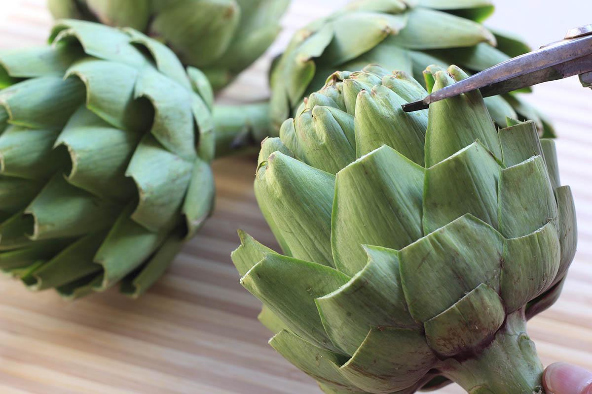How-to-trim-an-artichoke-sm