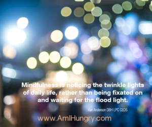 Mindfulness is noticing the twinkle lights of our daily life, rather than being fixated on and waiting for the flood light.