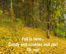 candy-and-cookies-and-pie-oh-my